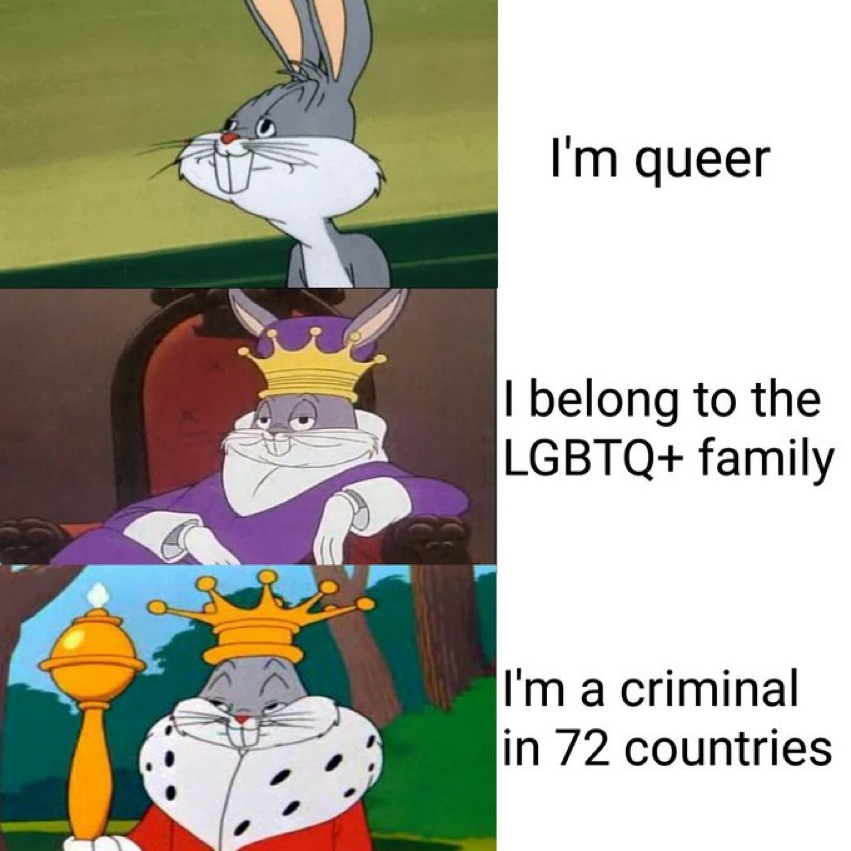 """A meme with Bugs Bunny progressively becoming more regal in 3 steps. The captions opposite start with """"I'm queer"""", then """"I belong to the LGBTQ+ family"""", and finally """"I'm a criminal in 72 countries"""""""