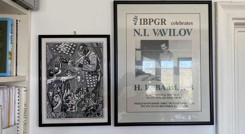 Posters of George Washington Carver and Nikolai Ivanovich Vavilov on my wall