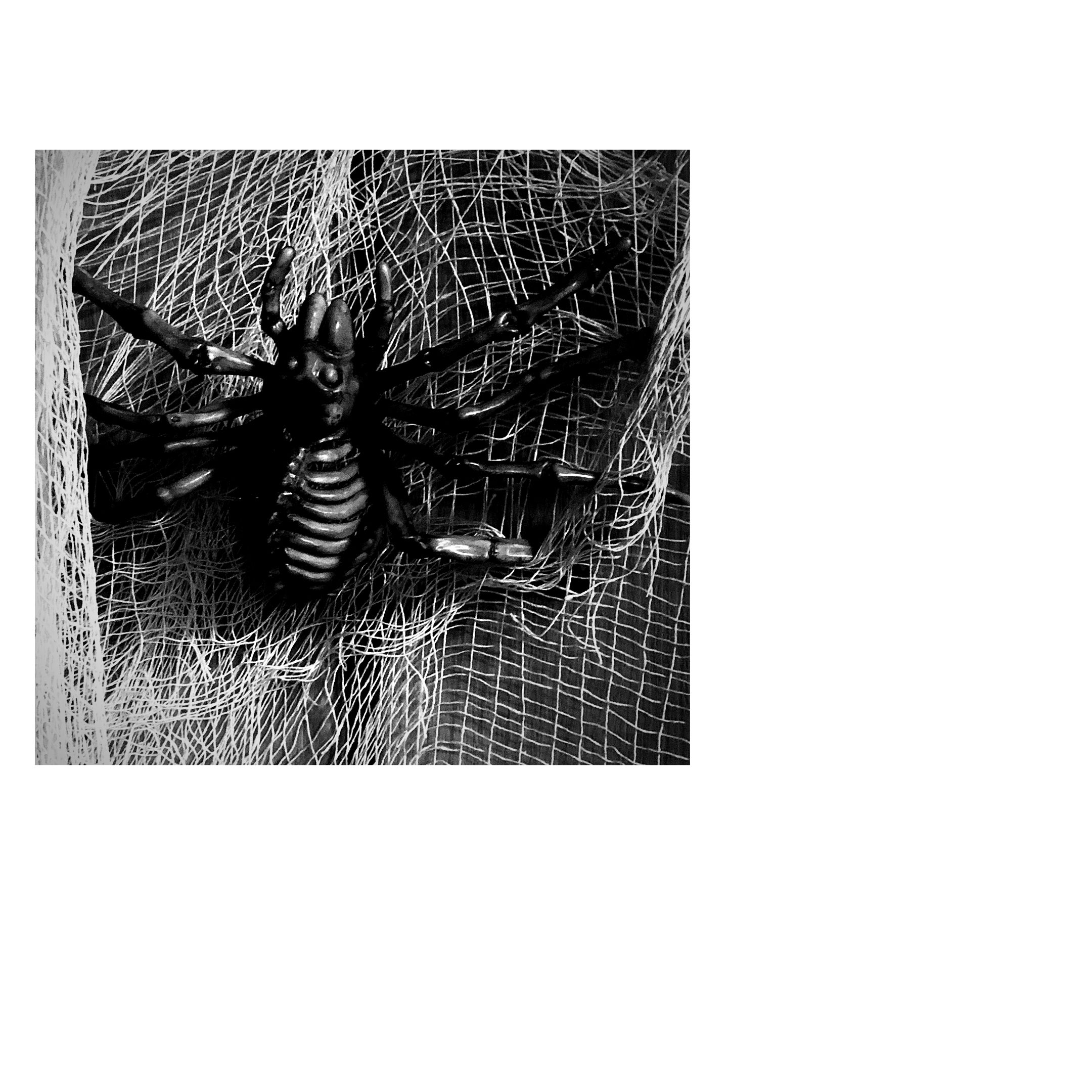 skele-spider