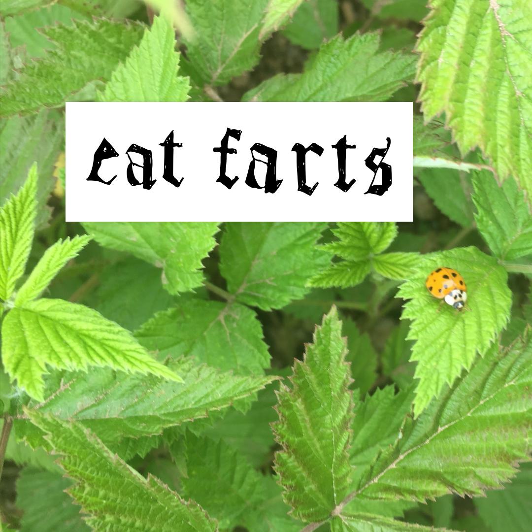 eat farts bumper sticker