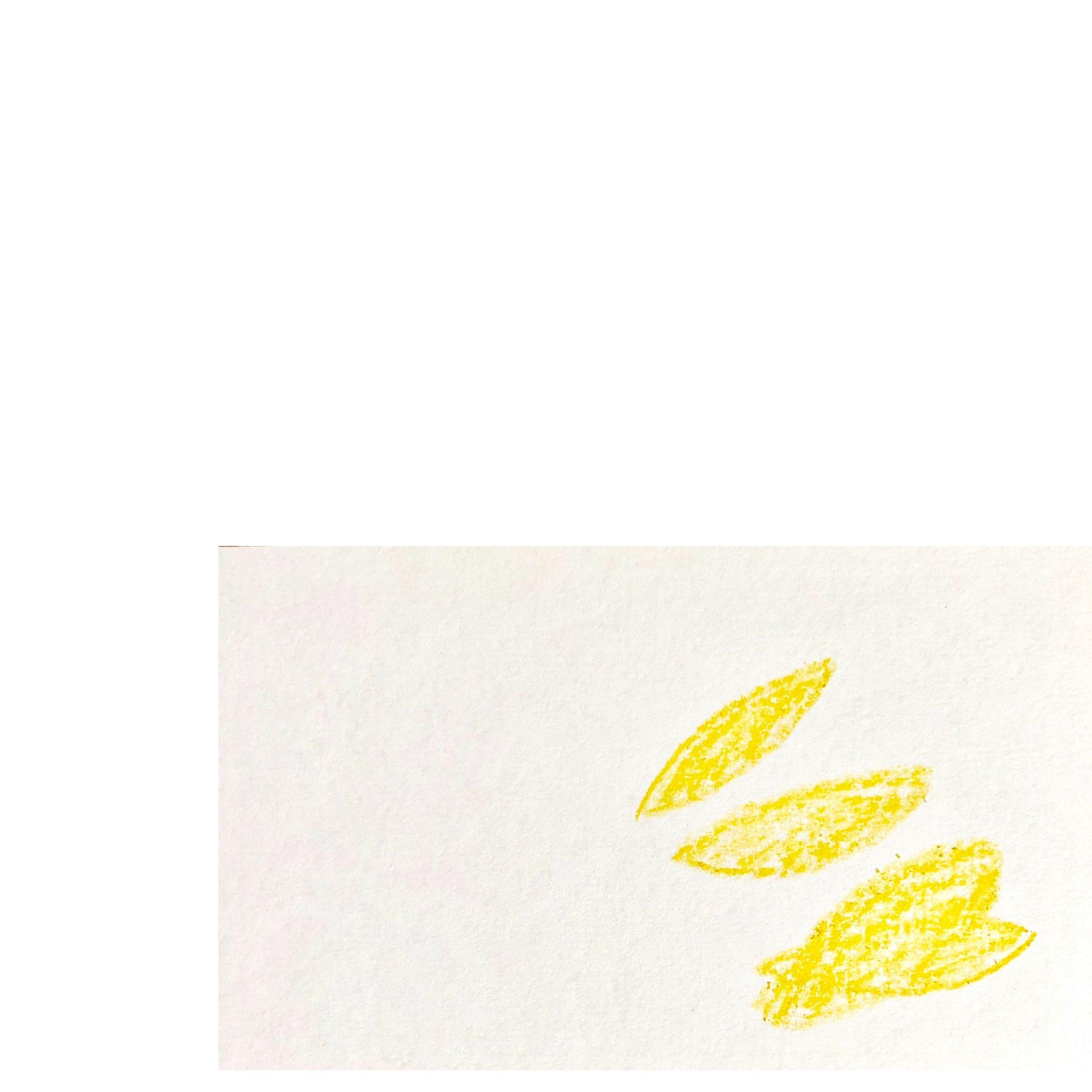 crayon petals
