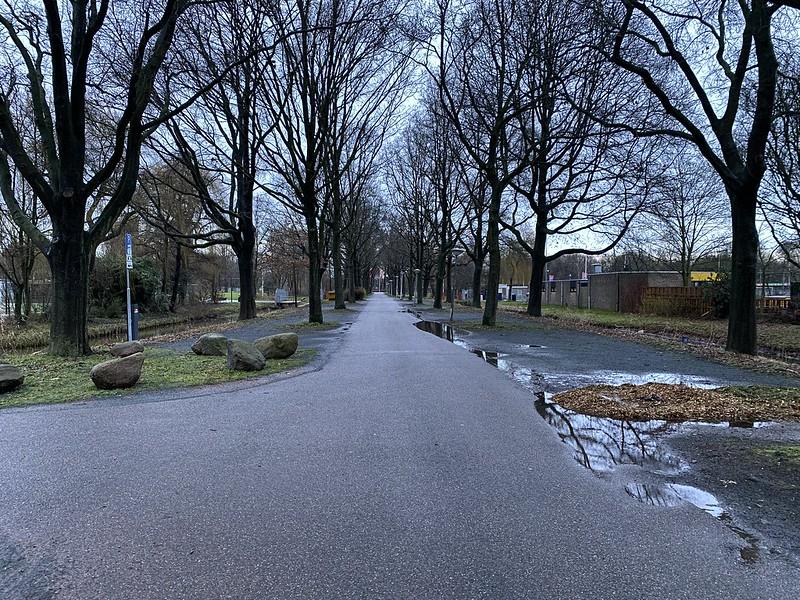 A tree lined bikeline in southeast Amsterdam